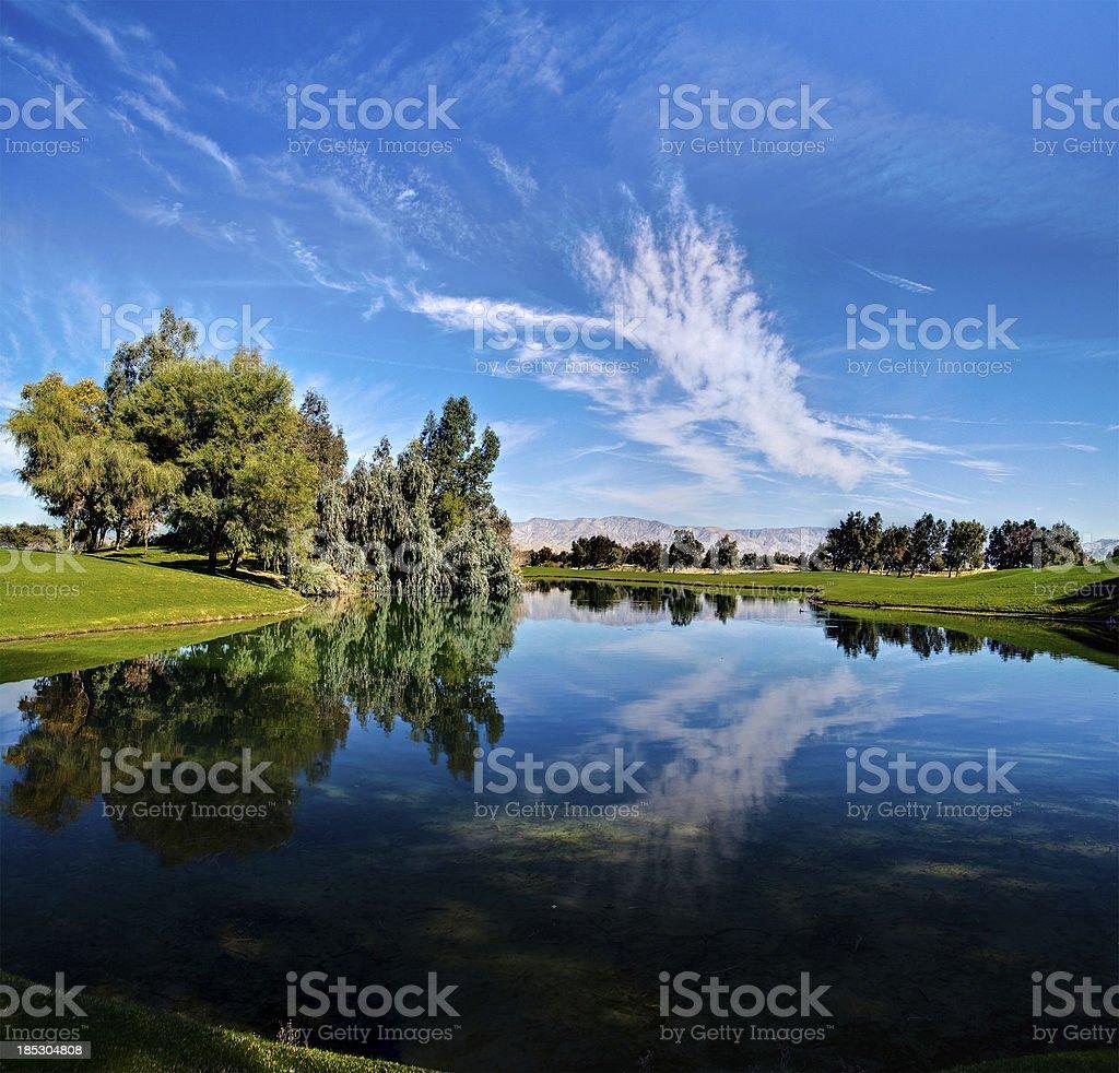 Lush Landscape royalty-free stock photo
