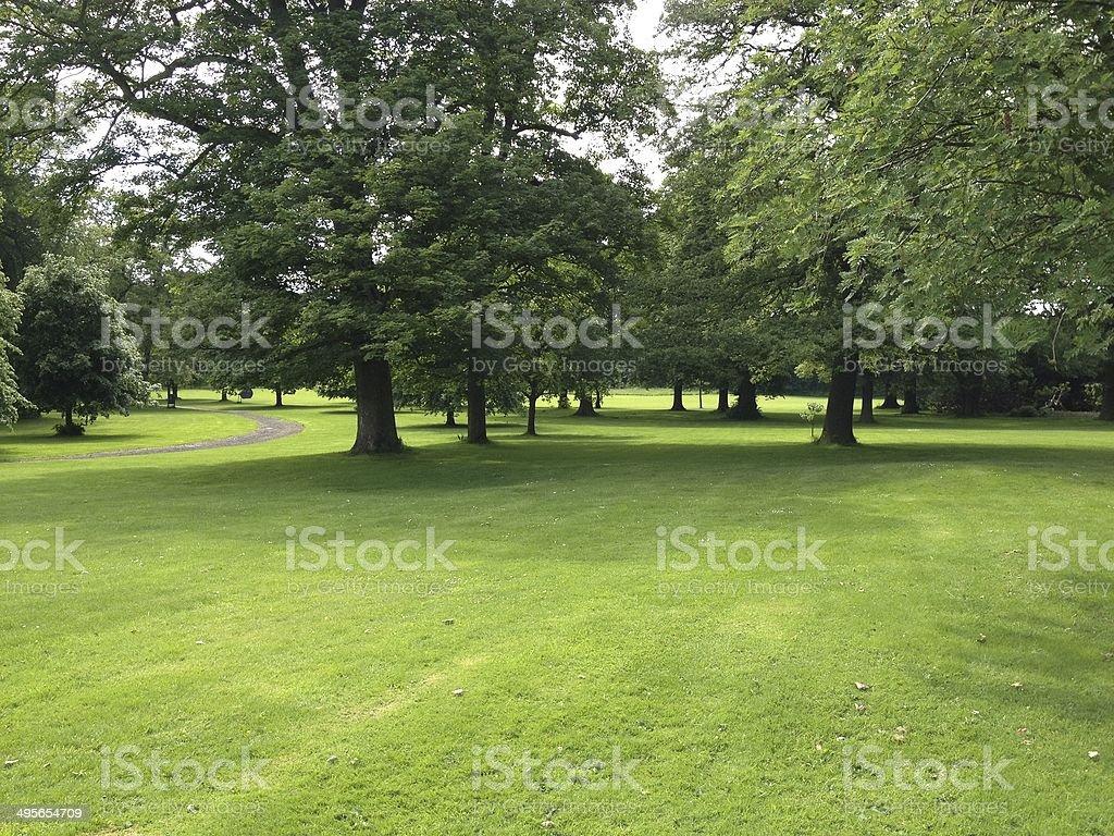 Lush Parkland stock photo