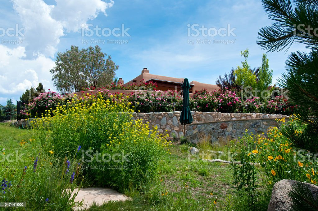 Lush Summer Back Yard Landscaping, Garden stock photo