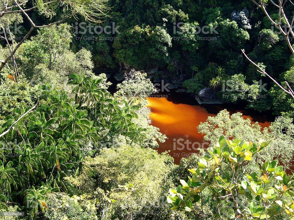 Lush tropical scenery in Bako national park, Sarawak, Malaysia stock photo