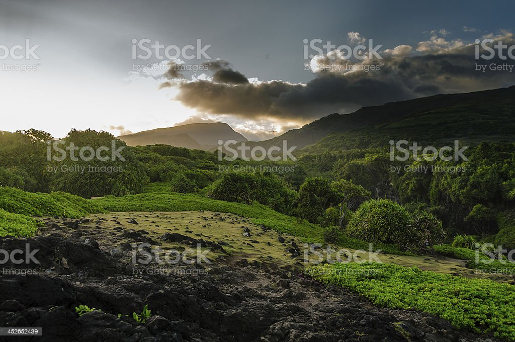 Lush tropical valley on the Road to Hana, Maui, Hawaii. stock photo