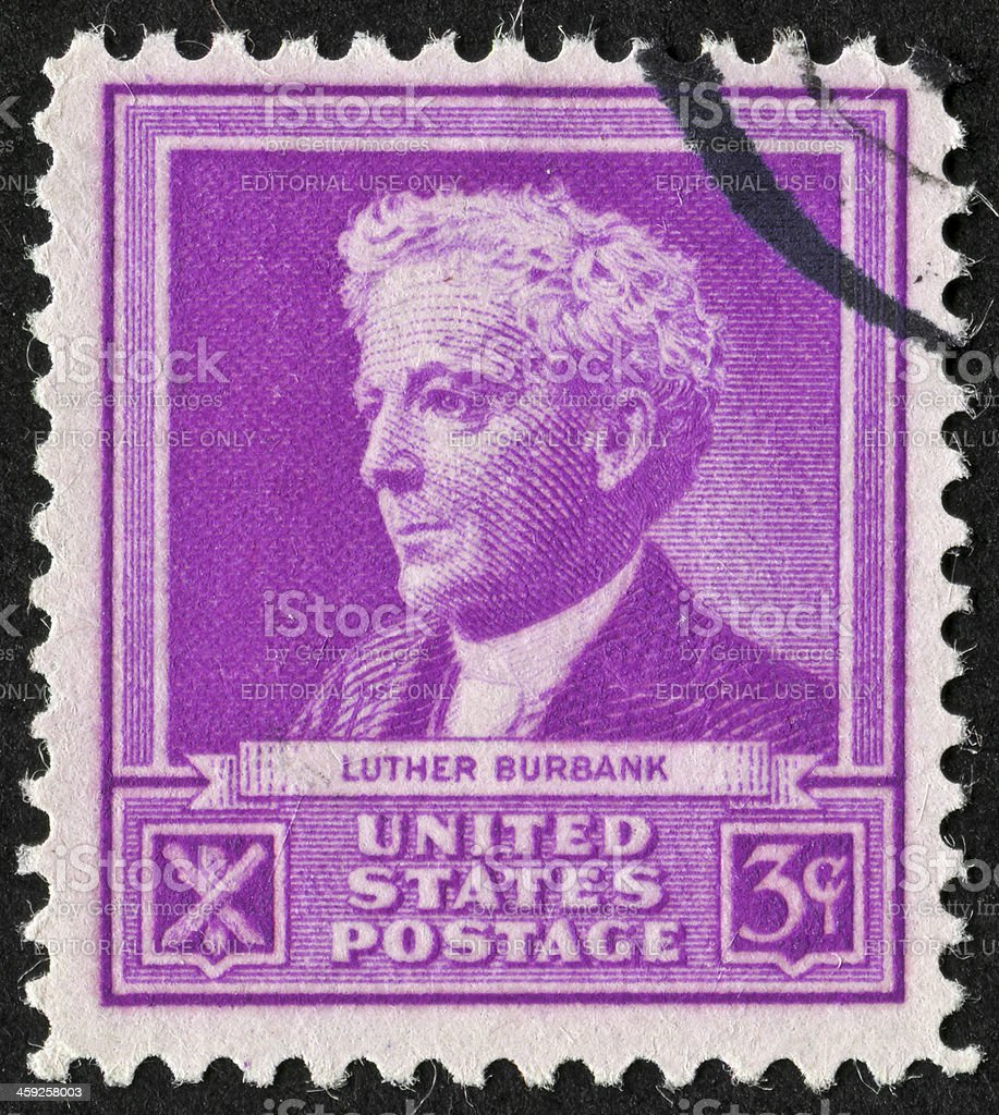 Luther Burbank Stamp stock photo