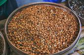 Luwak raw and roasted coffee bean