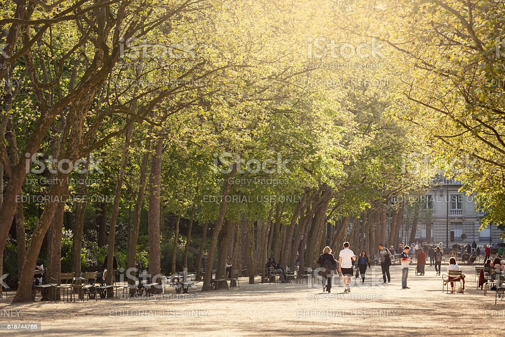 Luxembourg gardens in spring stock photo