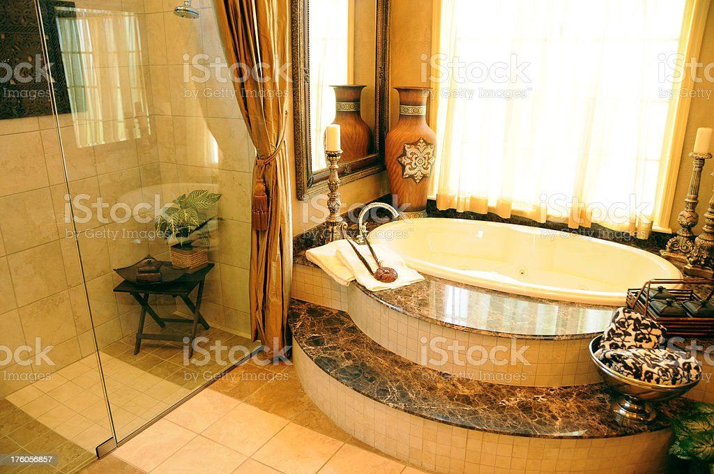 Luxurious Bathroom with a shower and bathtub royalty-free stock photo