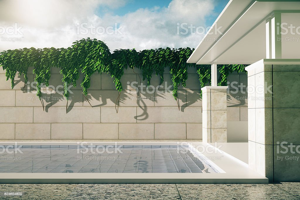 Luxurious pool with patio sideview vector art illustration