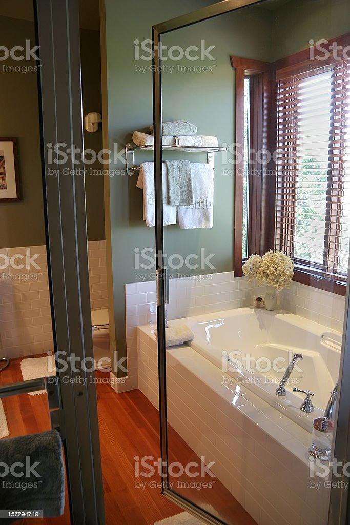Luxury Bathroom Through A Glass Shower Door royalty-free stock photo