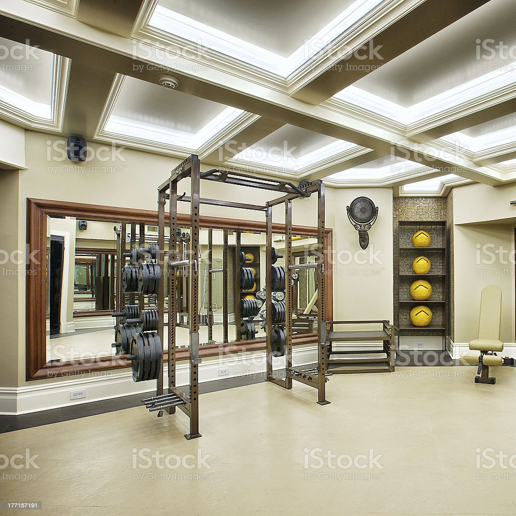 Luxury Home Gym royalty-free stock photo