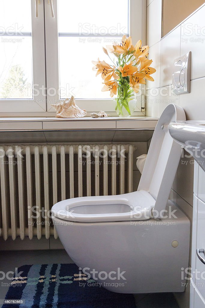 Luxury Lavatory stock photo