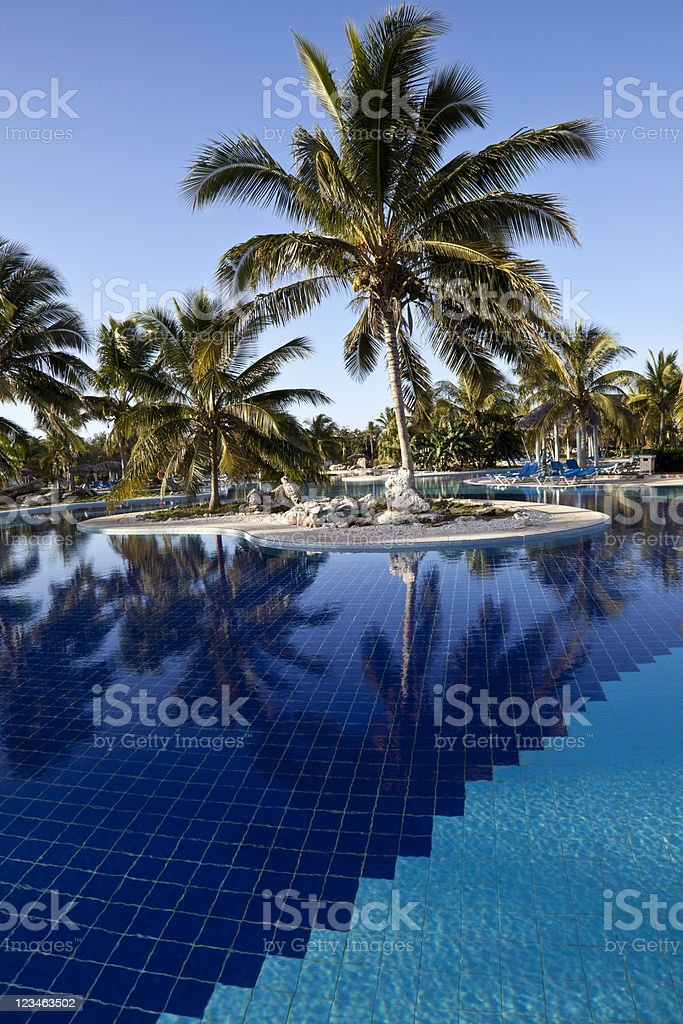 Luxury Resort Hotel Swimming Pool with Palm Trees royalty-free stock photo