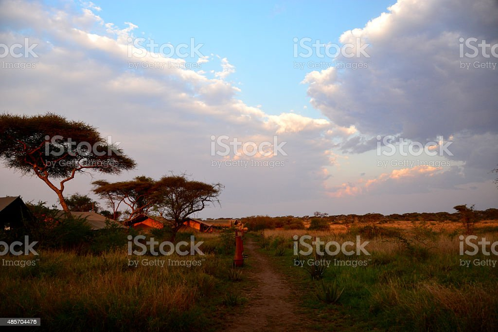Luxury Tented safari camp Serengeti during sunset stock photo