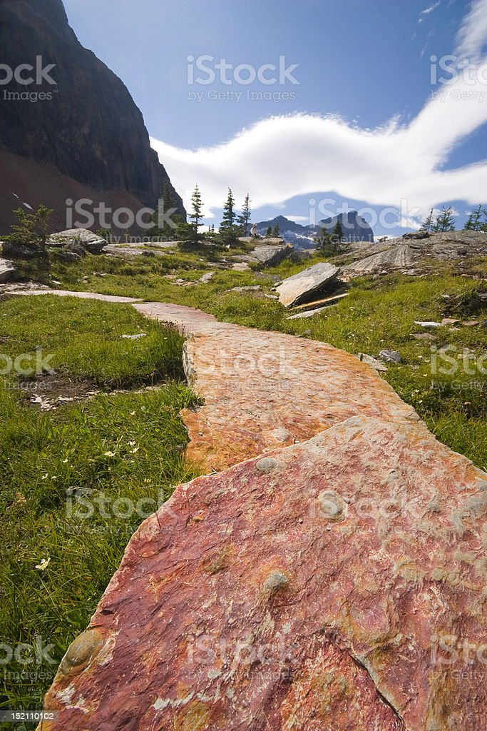 luxury trail in backcountry royalty-free stock photo