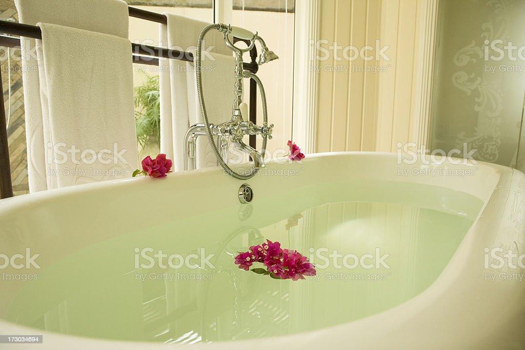 Luxury Tub royalty-free stock photo