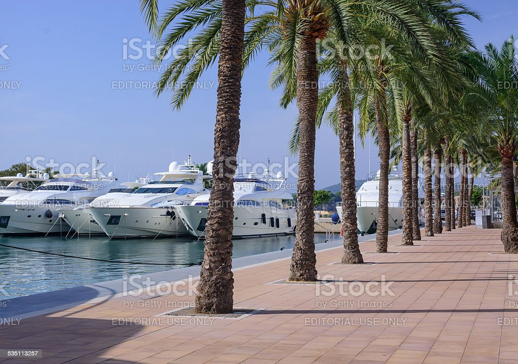 Luxury yachts moored in the exclusive marina stock photo