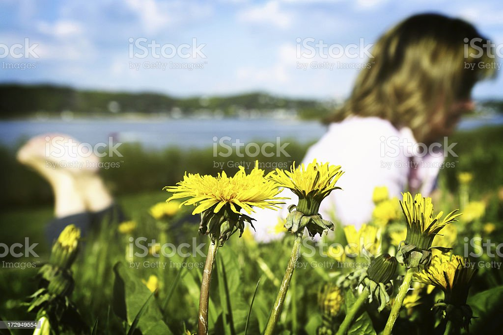 Lying in the Grass royalty-free stock photo