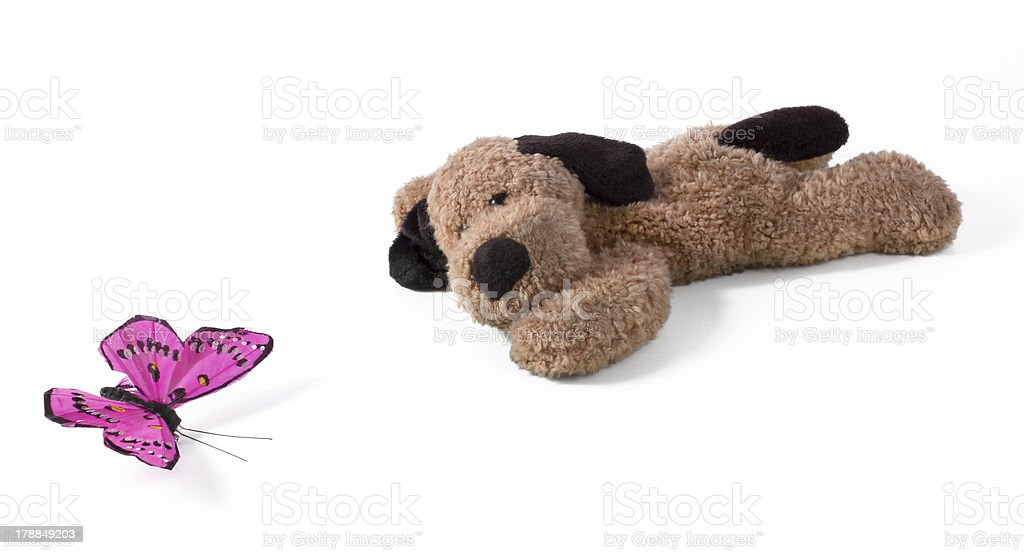 Lying Plush Dog With Silk Butterfly royalty-free stock photo