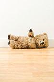 Lying teddy bear
