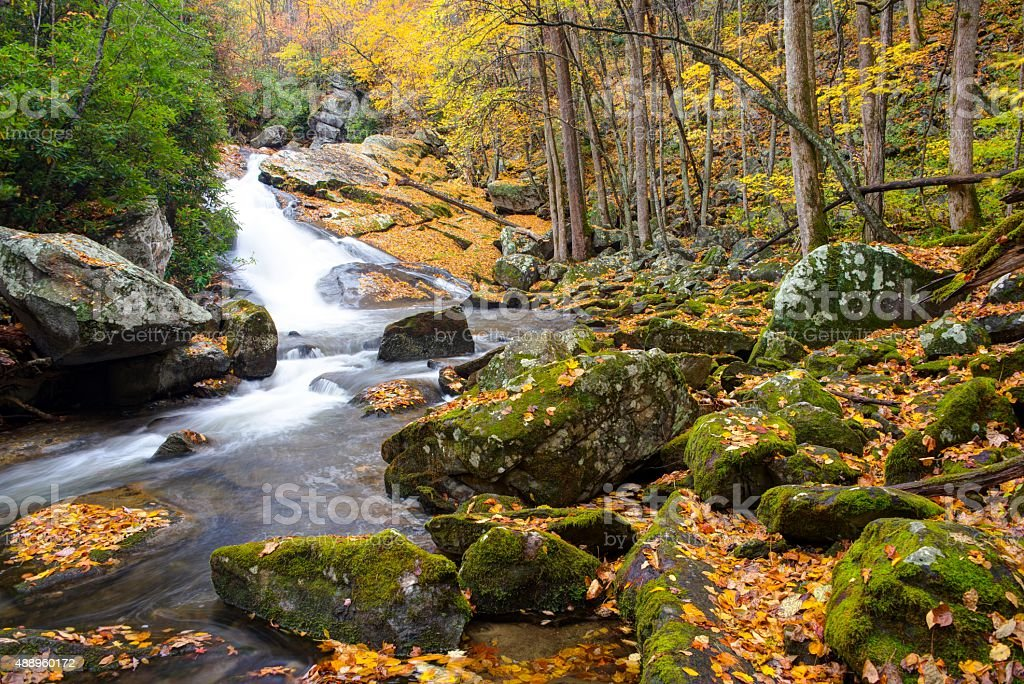 Lynn Camp Prong Cascades in Great Smoky Mountains National Park stock photo