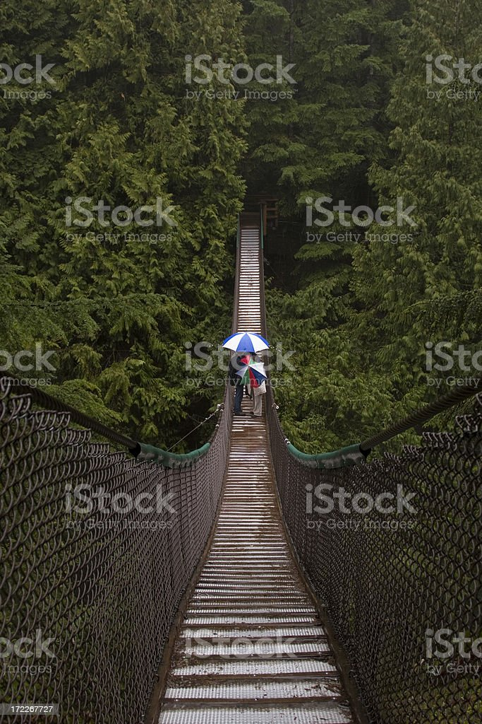 Lynn Canyon Suspension bridge stock photo