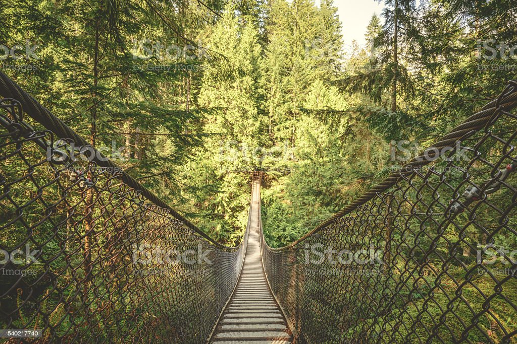 Lynn Canyon suspension bridge stock photo