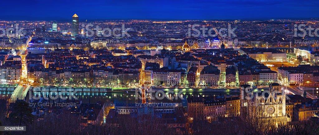 Lyon stock photo