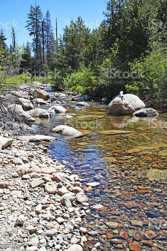 Lyons Creek v stock photo