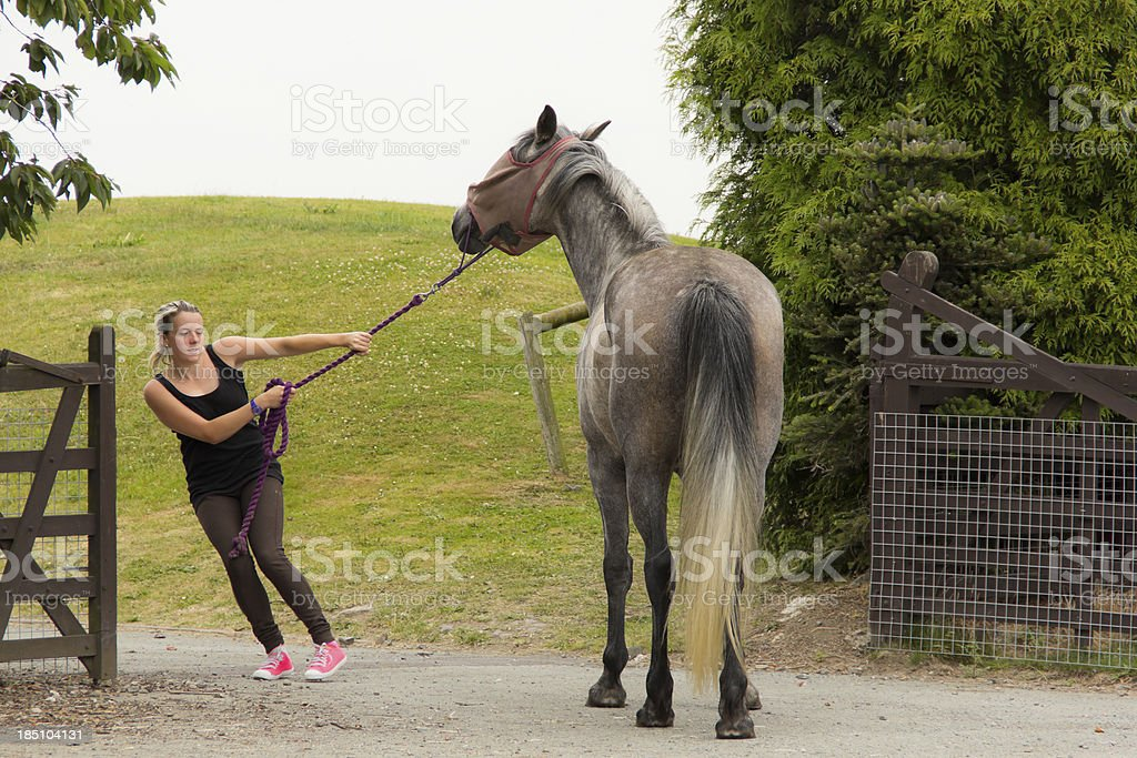 I'm not coming!-girl and horse in battle of wills stock photo