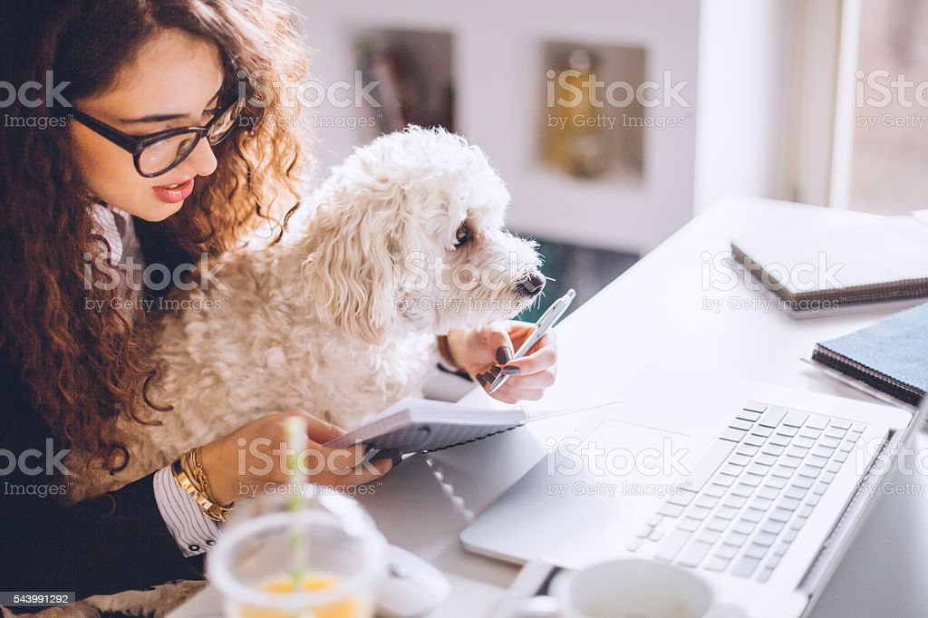 I'm not under stress when this cutie is here! stock photo
