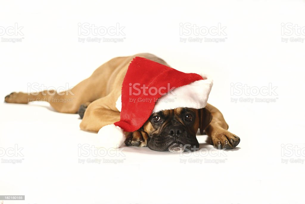 I'm so bored royalty-free stock photo