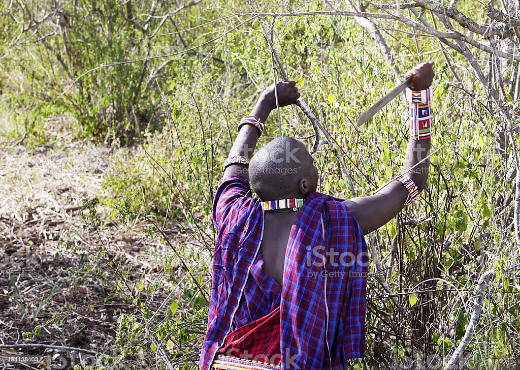 Maasai cleaning the bush with machete stock photo