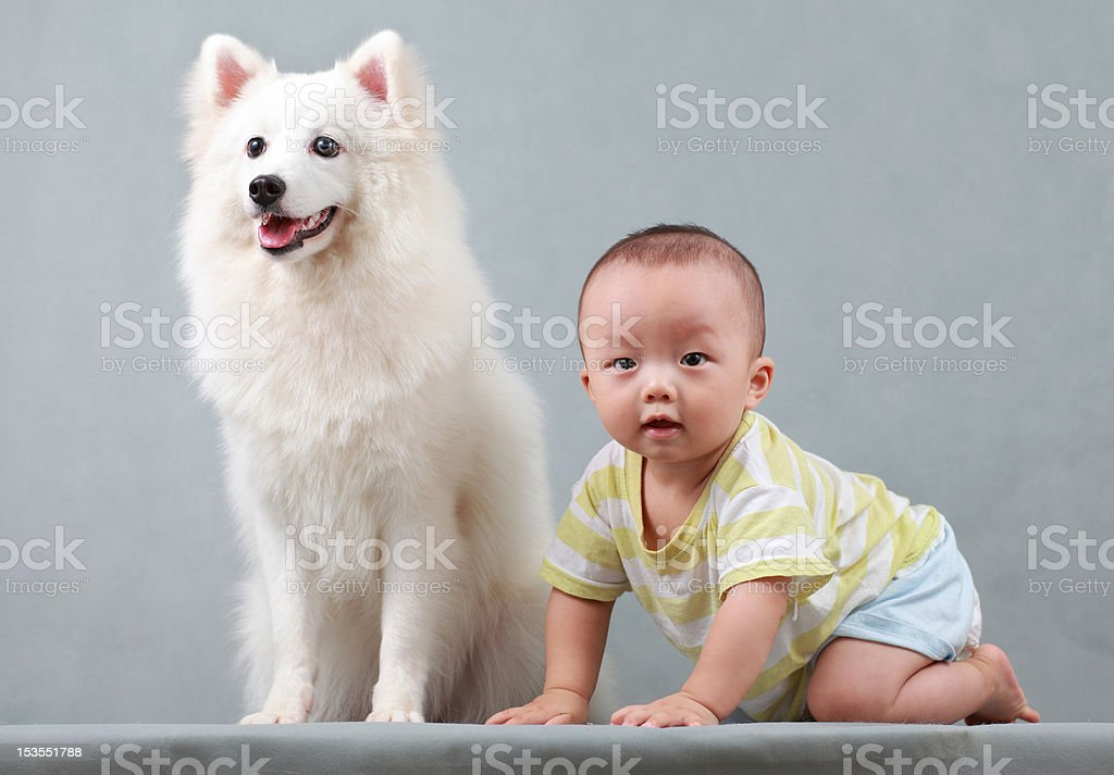 Maby and dog stock photo