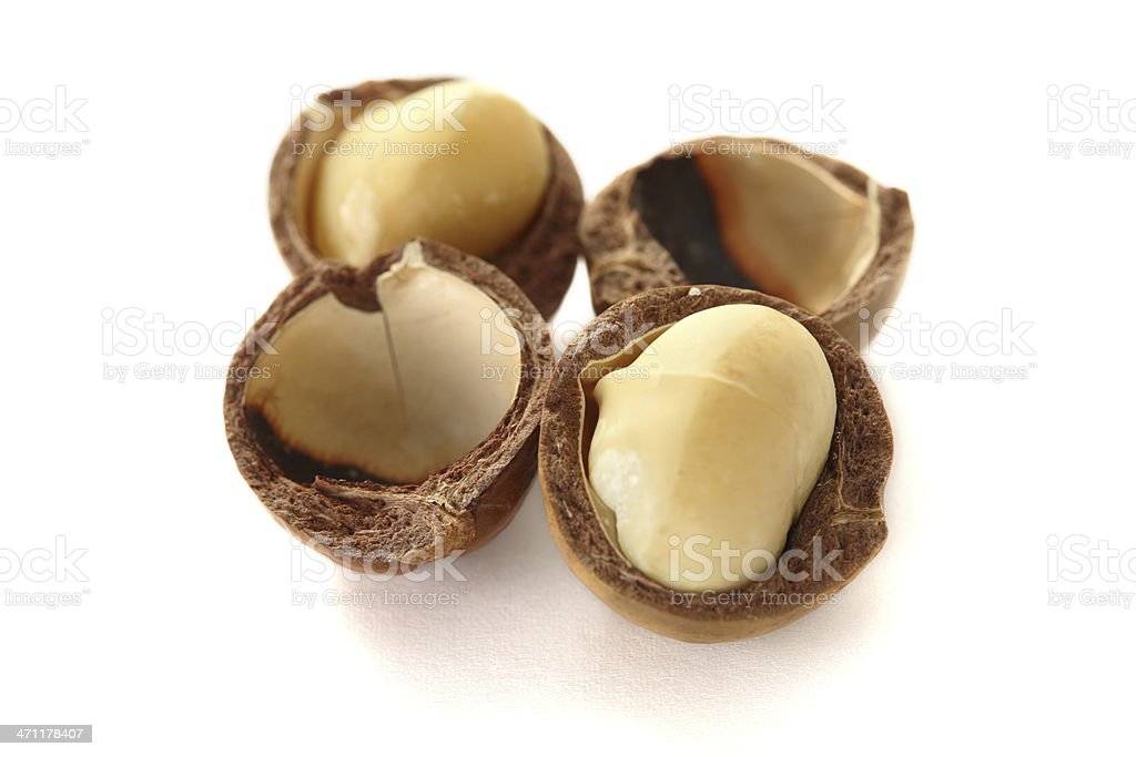 Macadamia isolated on white royalty-free stock photo