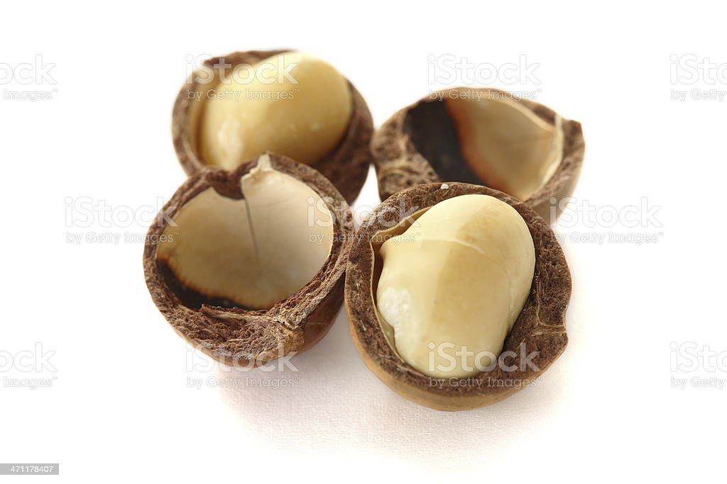 Macadamia isolated on white stock photo