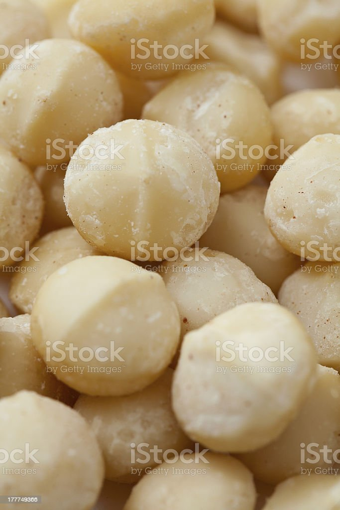 macadamia nut background stock photo
