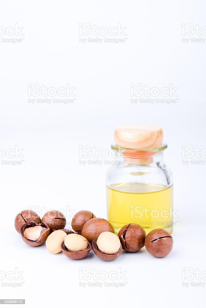 macadamia nut oil stock photo