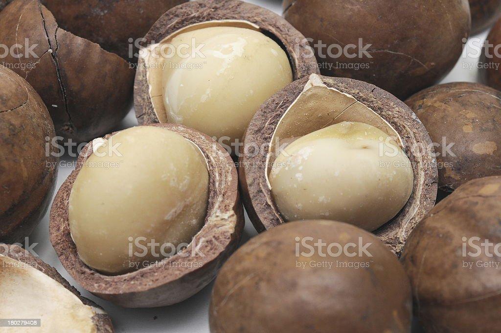 macadamia nut royalty-free stock photo