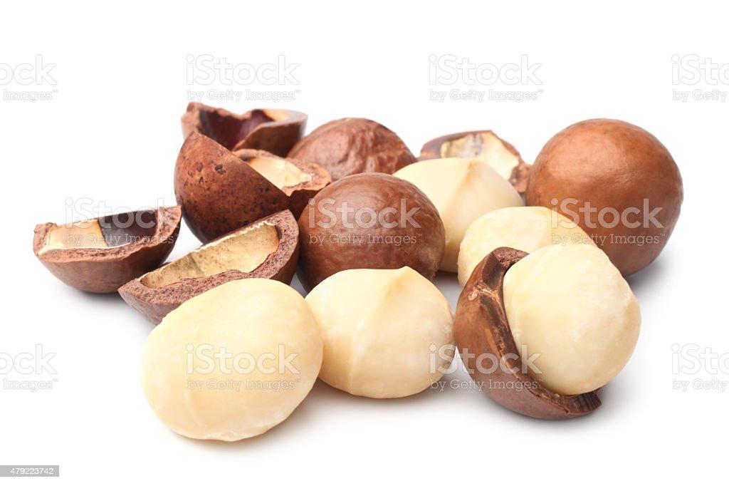 Macadamia nut stock photo