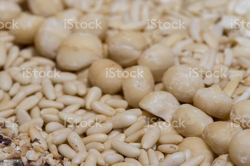 macadamia nuts close up detail stock photo