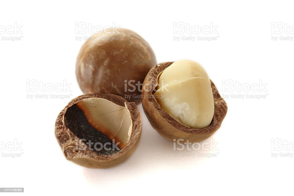 Macadamia nuts isolated on white stock photo