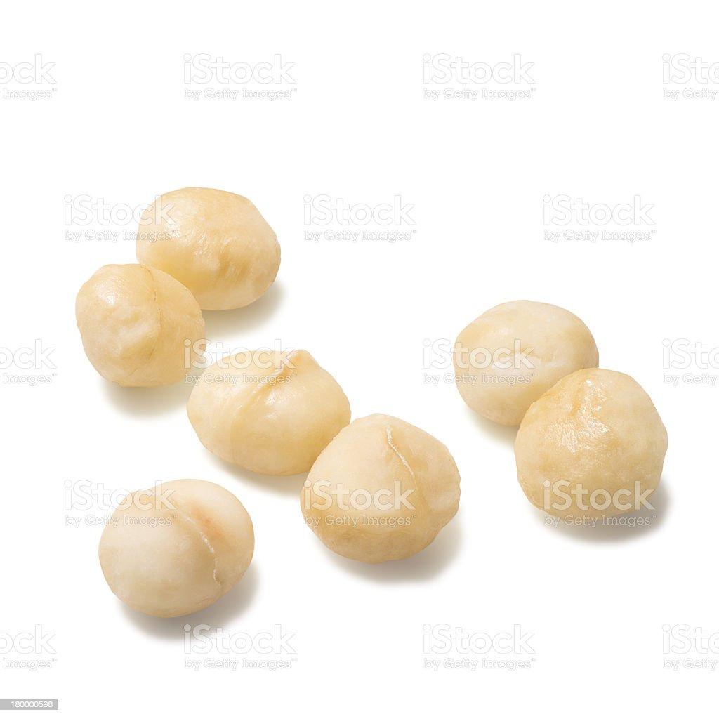Macadamia nuts on a white background stock photo