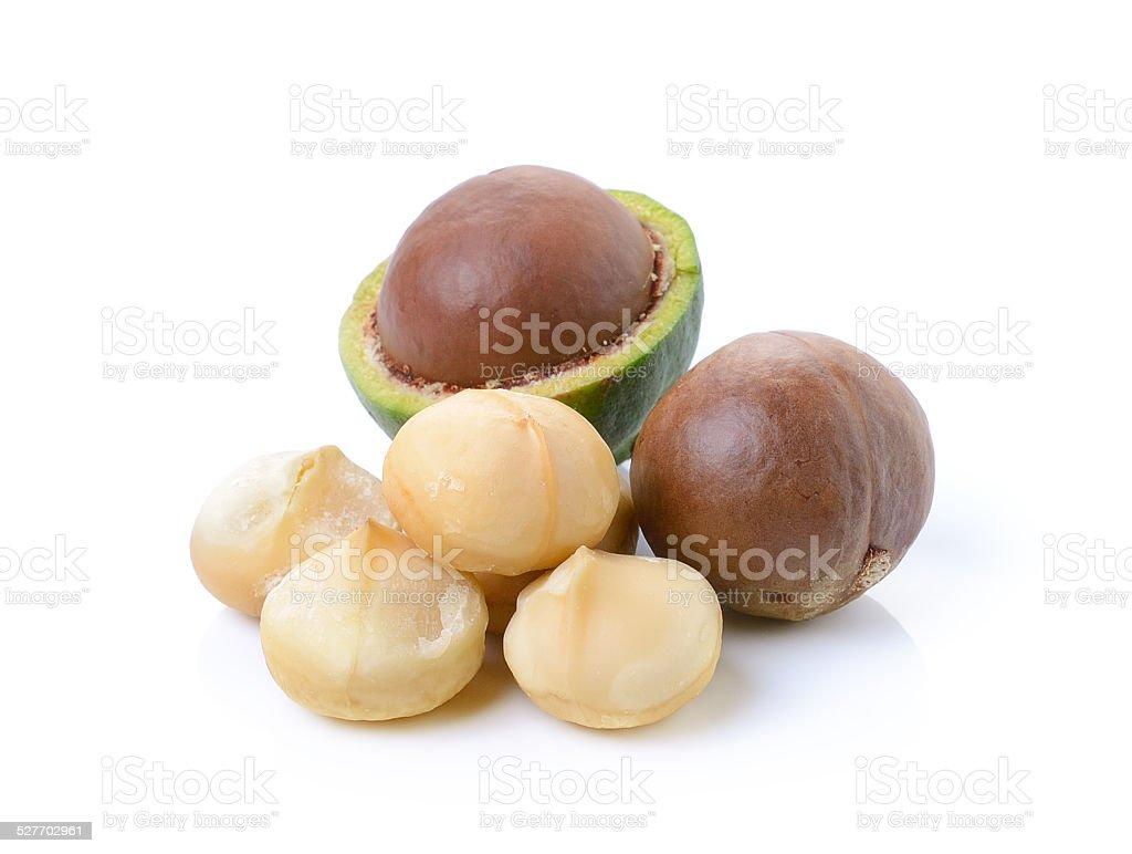 macadamia nuts on white background stock photo