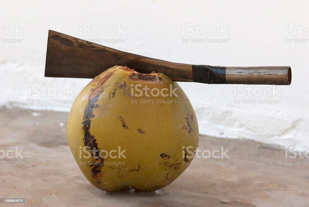 machete cuts a coconut stock photo