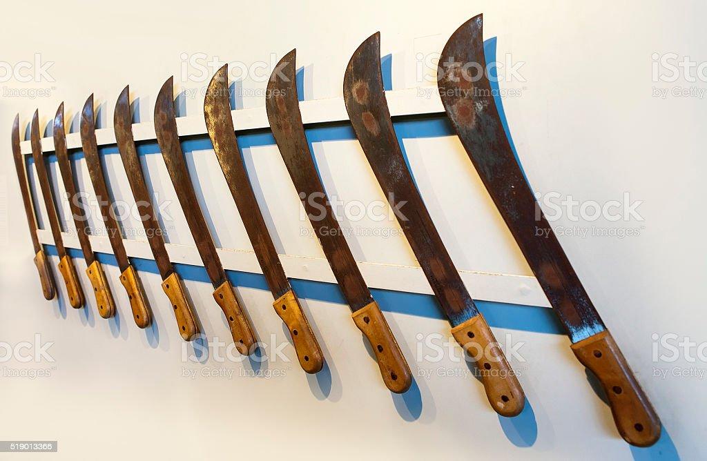 machete for cutting down of  sugar cane stock photo