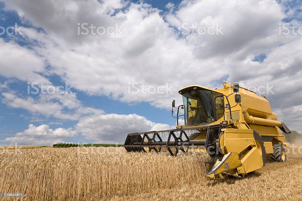 A machine harvesting crops from a field stock photo