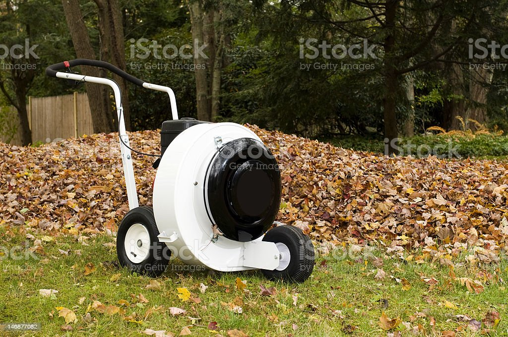 machine leaf blower with leaves in autumn stock photo