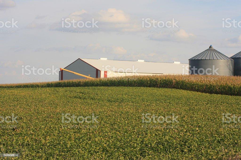 Machine Shed, Bins and Iowa Fields stock photo