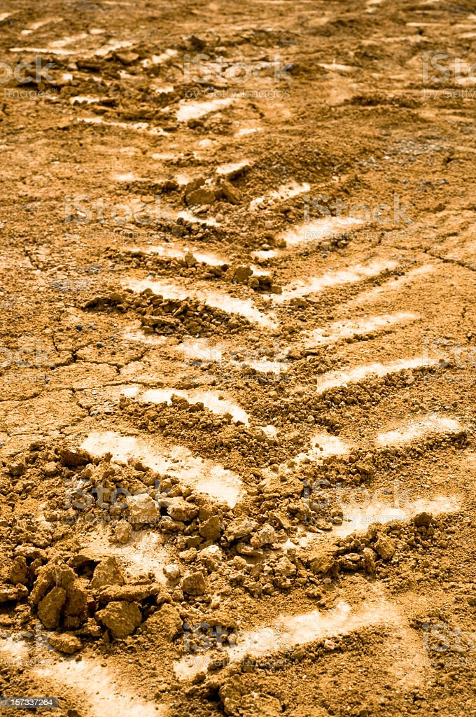 Machinery Tracks In Soil stock photo