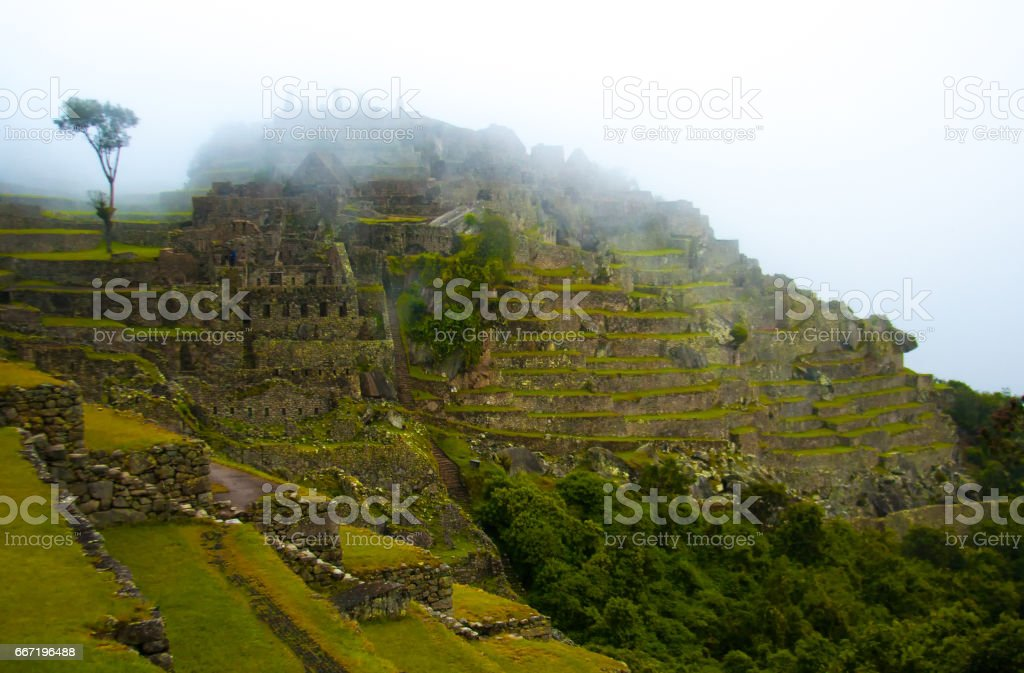 Machu Picchu, Peru: Green Terraces, Ruins, Fog stock photo