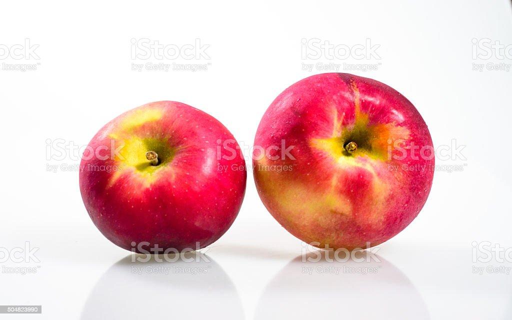 Macintosh Apple on the white background stock photo