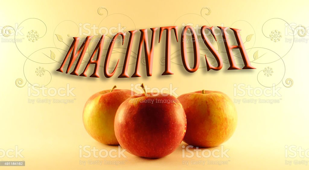 Macintosh apples2 stock photo